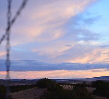 purple and pink New Mexico sunset shot through barbed wire fence by Jennifer Albeck