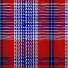 00501 A J Gallacher Tartan Fabric Print Iphone Case by Detnecs2013