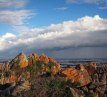 Storm Approaching Hermanus by Ludwig Wagner