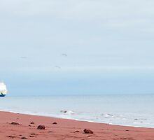 Red beach by brians101