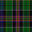 00504 Allison (MacGregor - Hastie) Tartan Fabric Print Iphone Case by Detnecs2013
