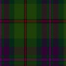 00515 Batten of Argyll (Baddenach) Tartan Fabric Print Iphone Case  by Detnecs2013