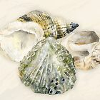 Sea shells art card by Sarah Trett