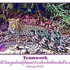 Mallards VS Leopard by jkgiarratano