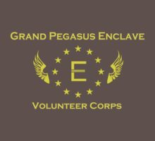 The Grand Pegasus Enclave: Volunteer Corps by Camsy