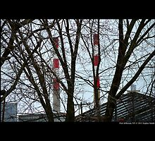 Power Plant Chimneys Behind Tree Branches - Port Jefferson, New York by © Sophie W. Smith
