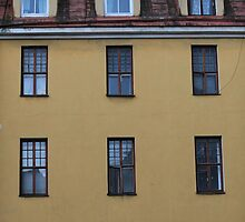 windows by mrivserg