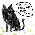 Black Cats Aren&#x27;t Evil by Sophie Corrigan