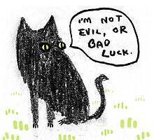 Black Cats Aren't Evil Photographic Print