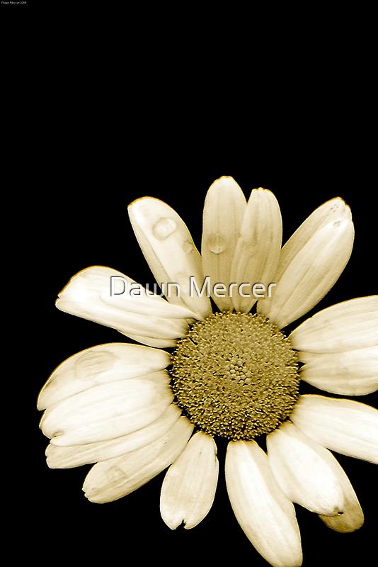 Flora Simplistic by MissDawnM