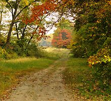 Hiking the Old Roads by michaelasamples