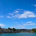 Lake View Panorama  by Jonathan  Green