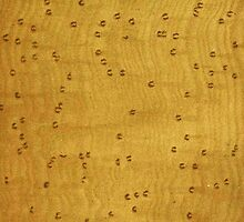 Bird's Eye Maple Wood Grain Pattern by RedPine