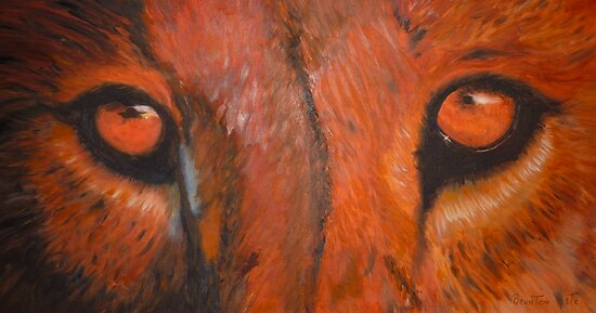 Tiger eyes - oil painting by Christina Brunton