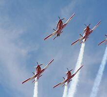 2013 Clipsal 500 Day 2 RAAF Roulettes by StuBear22