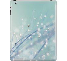 Dreamy Feather Drops iPad Case/Skin