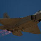 F-22A Raptor by Daniel McIntosh