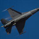 F-16C Fighting Falcon USAF by Daniel McIntosh