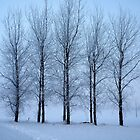 Winter Trees II by Ludwig Wagner