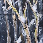 NIGHT BIRCHES  by eoconnor