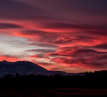 Lenticular Sunset by Cat Connor