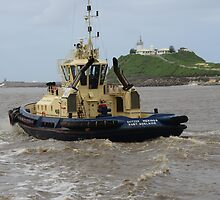 NEWCASTLE  SVITZER  TUG  MERINGA by Phil Woodman