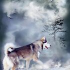 Husky - Winter Spirit by Carol  Cavalaris
