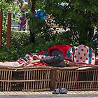Resting. by bulljup