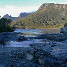 Cradle Mountain (5) Lake Lila by Larry Davis