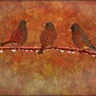 THREE LITTLE BIRDS by TOM YORK