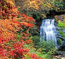 MEIGS FALLS,AUTUMN by Chuck Wickham