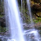 Grotto Falls in the Great Smoky Mountains by Terri~Lynn Bealle
