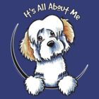White Piebald Havanese :: Its All About Me by offleashart