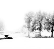 Winter at Lakeview Golf by Heather  Andrews Kosinski