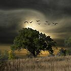 2746 by peter holme III