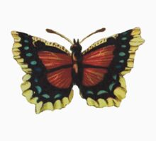 Yellow, Red, and Turquoise Butterfly by RedPine
