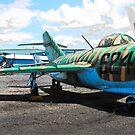 MiG - 15 by John Schneider