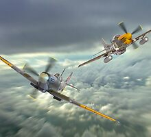 The Old Flying Machine Company - MH434 And Ferocious Frankie by Colin J Williams Photography