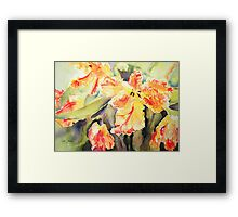 Orange Parrots Framed Print