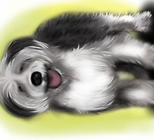 Alex Old English Sheep Dog by Sookiesooker