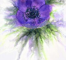 Another anemone! by Jacki Stokes