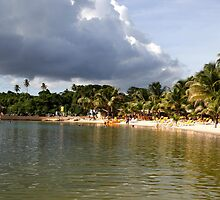 Coconut Bay, Tobago by Wayne Gerard Trotman