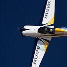 Awesome Aviation by Daniel McIntosh
