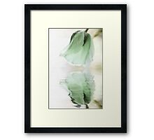 Gentle Green Framed Print