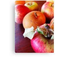 179/365 fruitful Canvas Print