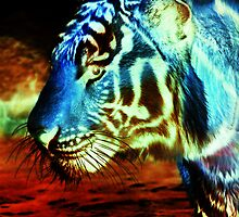 inverted tiger by drowningannie