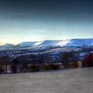 White on the Black Hill by gardencottage