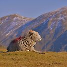 The Lake District: Enjoying Some Winter Sun by Rob Parsons