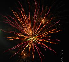 Fireworks 3 by Lindy Long