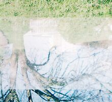 Tree Double Exposure by Robbie Patterson